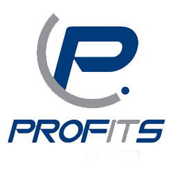 Professional IT Solution